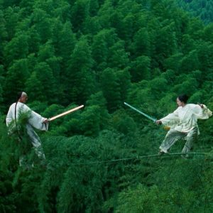 Crouching Tiger, Hidden Dragon, which lost to ?